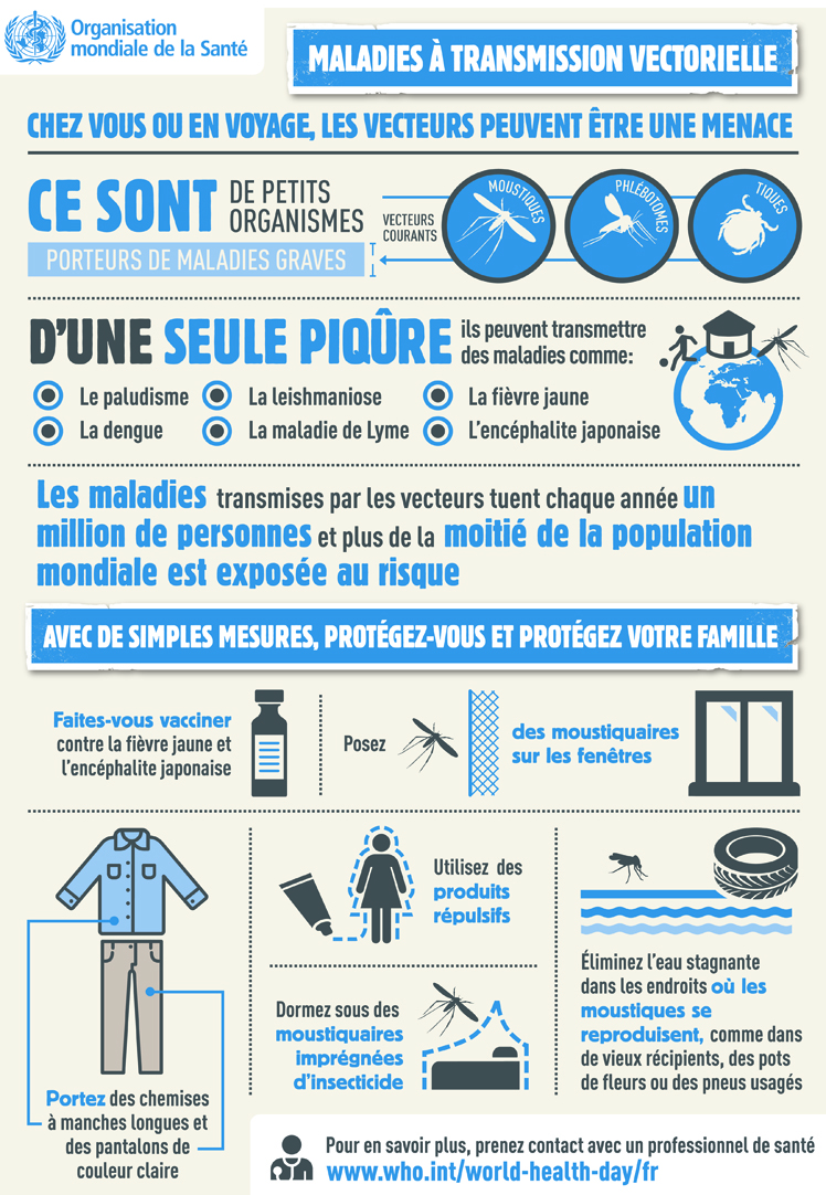 infographie OMS